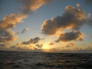 Day 29 - sunset